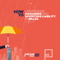 managers-liability-in-brazil