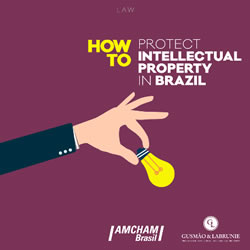 protect-intellectual-property-in-brazil