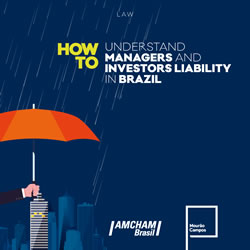 cover-how-to-understand-investors-and-managers-liability-in-brazil-cover