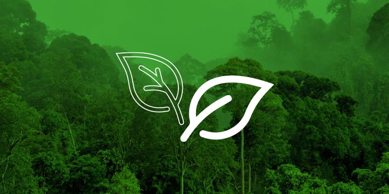 O #BrasilPeloMeioAmbiente reúne 82 ações diferentes; conheça os cases que integram a iniciativa