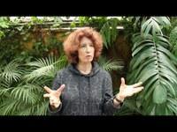 Elisabeth Laville | Sustentabilidade e Inovação